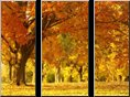 canvas pictures autumn scene