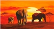 mural Mia Morro - Elephants in the sunset