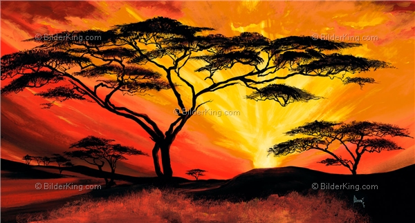 Mural - Mia Morro : African sunset