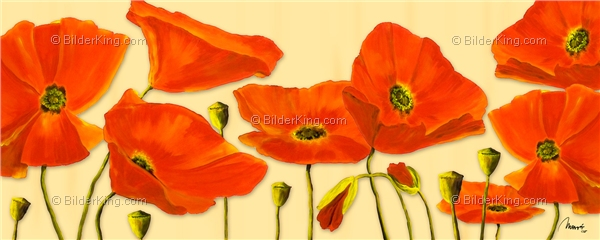 Mural - Mia Morro : Beautiful Poppies